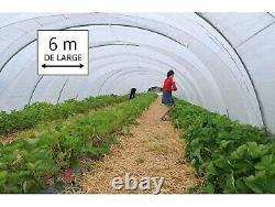 Bâche transparente 6m de large, longueur de 12m (6m x 12m) pour serre de jardin